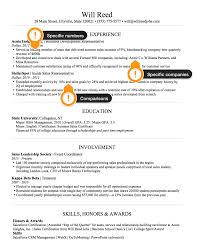 Example_Sales_Resume_WorkExperience