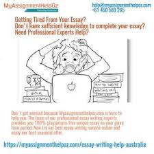 essay about himself writing style