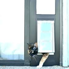 doggy door for glass door sliding glass door dog door insert screen door door panel cat doggy door for glass