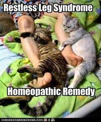 Restless leg syndrome - Cats - Memes and Comics via Relatably.com