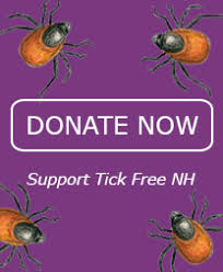 Cdc Tick Identification Chart Identify Tick Free Nh