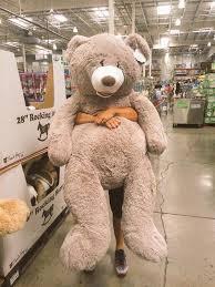 huge teddy bear   Huge teddy bears, Teddy bear gifts, Big teddy