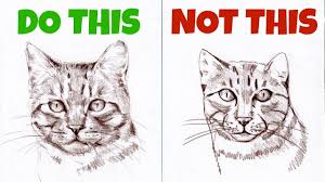 Sketches Animal Sketching Animals How To Draw A Realistic Cat Youtube