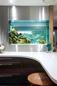 fish for office. Extraordinary Full Size Of Kitchen Island Counter Fish Tank Office Aquarium Inspirations For E