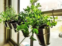 Small Picture Small herb garden Garden Ideas