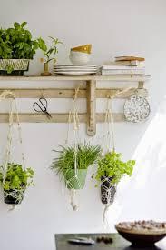 Hanging Kitchen Herb Garden Indoor Herb Gardens Norse White Design Blog