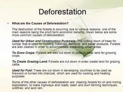 causes and effect of deforestation essay  causes and effect of deforestation essay
