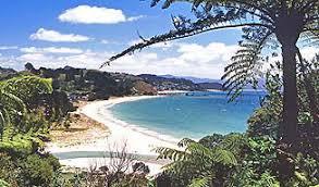 whitianga, hahei, hot water beach, kuaotunu & mercury bay Whitianga Map New Zealand tait's fun maps whitianga new zealand map