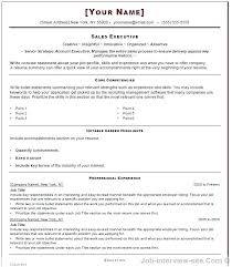 Most Professional Resume Format Mesmerizing Most Professional Resume Format For Job Interview Ms Awesome