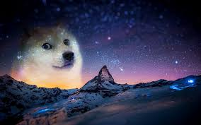 doge wallpaper hd. Brilliant Wallpaper 1920x1200 Snow Night Animals Doge Memes Wallpapers HD  Desktop And  Intended Doge Wallpaper Hd 0