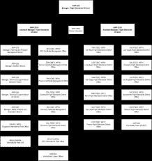 Faa Afs Org Chart Fsims Document Viewer