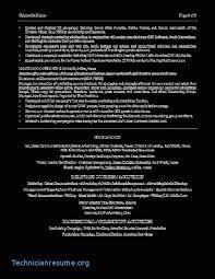 Digital Marketing Resume Sample Beauteous Vp Digital Marketing Resume Essay Writing Phobia In Undergraduates