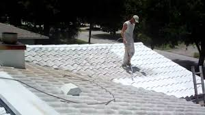 roof cleaned sealed painted with tile guard coating you