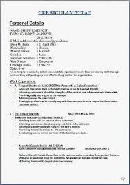 ideas about Curriculum Vitae Examples on Pinterest   Resume     Curriculum Vitae   Yoel Hoffmann