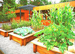 best garden vegetables. Planning Vegetable Garden Layout Diagram Ideas For Beginners. What You Opt To Do With Your Landscape Is Dependent On How Long Money And Energy Need Best Vegetables