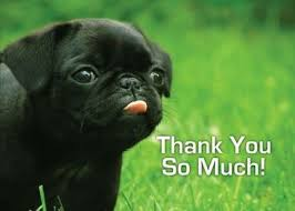 Image result for thank you blog fans