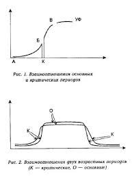 психология педагогика Взаимоотношения организма на разных этапах  Взаимоотношения организма на разных этапах онтогенеза