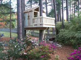 tree house plans for two trees. Interesting Trees Tree House Plans Two Trees Projects Inspiration 11 2 Tiny Throughout For T