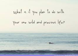 Life Is Precious Quotes New Life Is Precious Quotes Nhat Hanh Quote Be Yourself Life Is 48