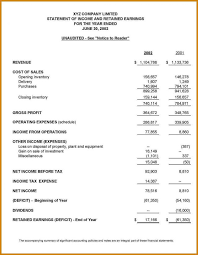 financial report template word example of a financial report 9 the reports and statements statement
