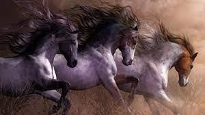Three Musketeers Horses Art Hd ...