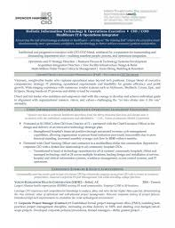 Cio Resume Examples Examples Of Resumes