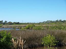 Anclote River Floridas Gulf Coast Hubpages