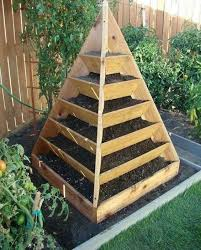 not a good option for vegetable raised beds compared to untreated wood pressure treated lumber lasts longer and is available at a comparable cost