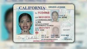 Workers Cnn Video Driver's Licenses - For Undocumented