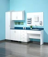 wall mounted office cabinets. Medical Office Cabinets Storage Cabinet Doctors Wall Mounted Folio Nurture F