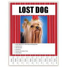 Lost Pet Poster Under Fontanacountryinn Com