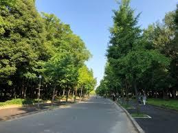 「早朝 大阪城」の画像検索結果