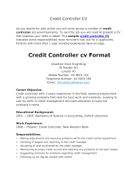 Nice Resume Template And Cv Example For Credit Controller Position