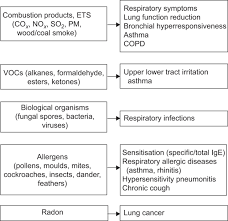 respiratory health and indoor air pollutants based on quantitative figure