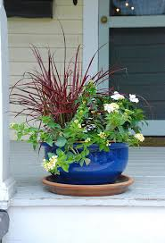 Summer Party Ideas: Decorating with Potted Plants