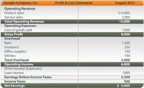 Profit And Los Sample Profit Loss Statement Articles