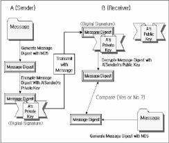 Edi Process Flow Chart Basic Flow Chart Of Digital Signature Activex Components