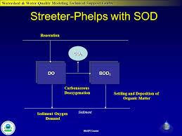 streeter phelps with sod dodo bod 1 co 2 reaeration settling and deposition of organic matter sediment oxygen demand carbonaceousdeoxygenation sediment
