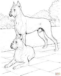 Boxer Dog Coloring Page Coloring Home