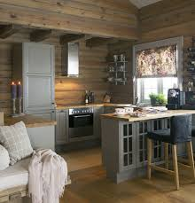 Cabin Kitchen Design