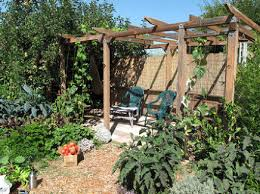 Small Picture Favourite Gardens sustainable Edible Garden design consultancy