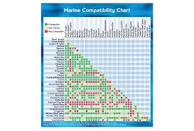 Dottyback Compatibility Chart Saltwater Fish Compatibility The Aquarium Setup