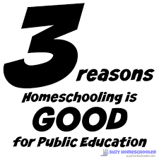 argument against homeschooling breaking the mold thoughts from a homeschooling is good for public education suzy homeschooler the worst argument against homeschooling arguments against homeschooling persuasive essay