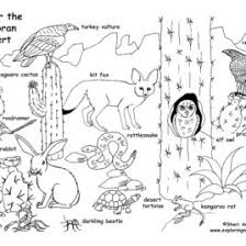 Small Picture Free Printable Coloring Pages Of Desert Animals Archives Mente