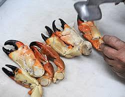 Stone Crab Season Opens October 15 Boatsafe Blog