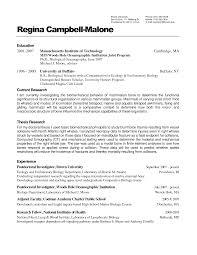 Smart Design Resume Wizard 6 Resume Wizard Resume Example