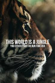 Quotes about life tumblr meaningful Images This World Is Jungle Best Life Quotes Tumblr 1 Freshmorningquotes 40 Best Life Quotes Tumblr Freshmorningquotes