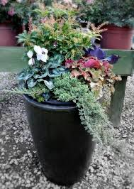 4945 Best Garden Glory Images On Pinterest  Garden Ideas Flower Container Garden Ideas For Winter
