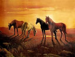 Cheap Horse Posters Buy Horse Poster