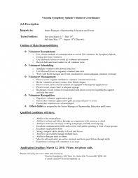 Volunteer Description Resume Professional Resume Templates